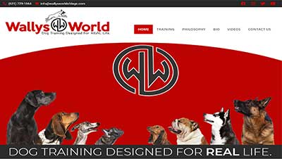 Screenshot of website we built for Wallys World of Dogs